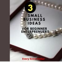 3 Small Business Ideas For Beginner Entrepreneurs